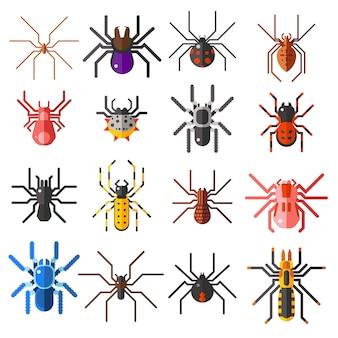 Satz der flachen spinnenkarikatur färbte ikonenillustration