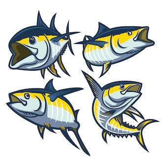 Satz der gelben flossen-thunfischillustration lokalisiert