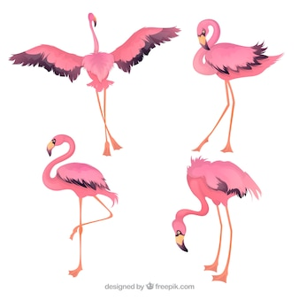 Satz der gezeichneten art der rosa flamingos in der hand