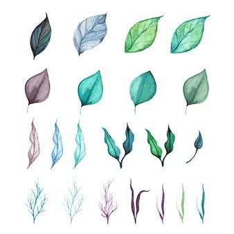 Satz der grünblattanlage in der aquarellart