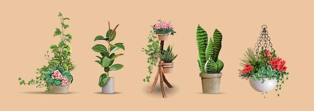 Satz der realistischen detaillierten haus- oder büropflanze des vektors für innenarchitektur und dekoration.