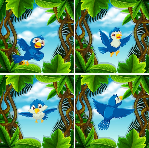 Satz des netten blauen vogels in den szenen