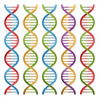 Satz dna-symbole für wissenschaft und medizin.