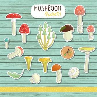Satz farbige pilzaufkleber auf blauem hölzernem. sammlung lokalisierte helle espe, orangenschale, champignon, pfifferling, giftpilz, todesschutzkappe, pilz. lebensmittel-elemente-cartoon-stil.