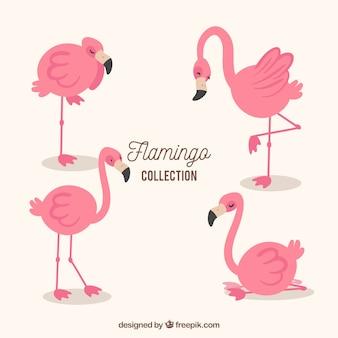 Satz flamingos in den verschiedenen haltungen
