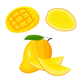 Satz frische ganze, halbe, geschnittene scheibe und stück mangofrucht lokalisiert auf weißem hintergrund. vegane lebensmittelikonen im trendigen cartoonstil. gesundes exotisches tropisches nahrungsmittelkonzept.