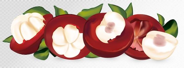 Satz frische mangostan auf weißem raum. ganze und halbierte mangostanfrucht mit grünem blatt