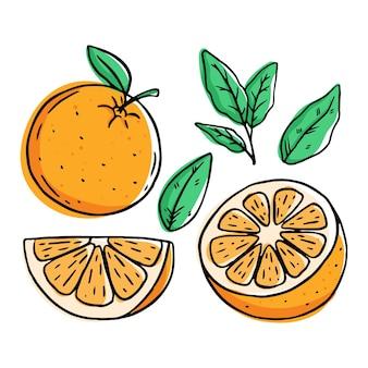 Satz frische orangenfrucht lokalisiert auf weiß