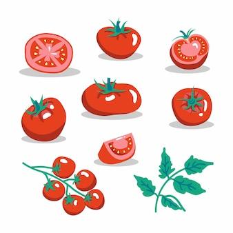 Satz frische rote tomatenvektorillustrationen. eine halbe tomate, eine tomatenscheibe, kirschtomaten.