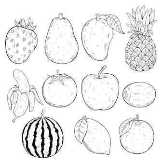 Satz frische und gesunde saftige früchte mit skizze oder hand gezeichneter art auf weißem hintergrund