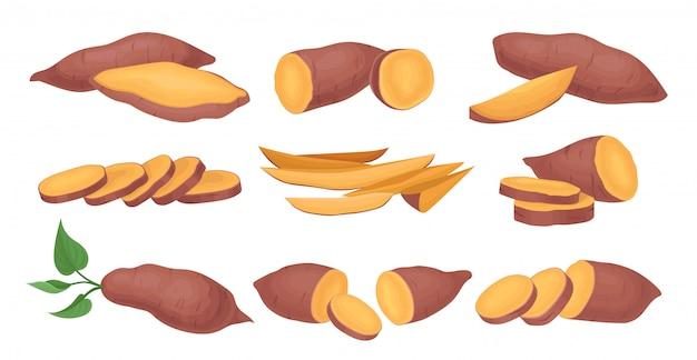 Satz ganze und geschnittene süßkartoffeln. reifes und leckeres gemüse. natürliches und gesundes essen. rohe fledermaus