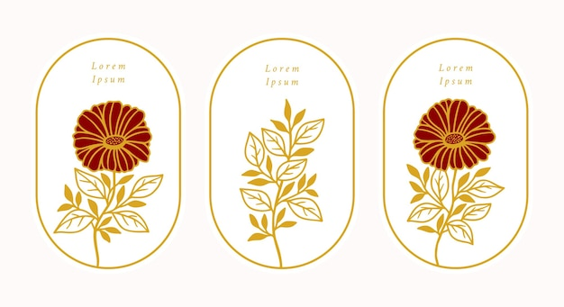 Satz hand gezeichnete vintage gold botanische gänseblümchen gerbera blume