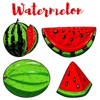 Satz hand gezeichnete wassermelonenillustrationen auf weißem hintergrund. elemente für poster, menü, flyer. illustration