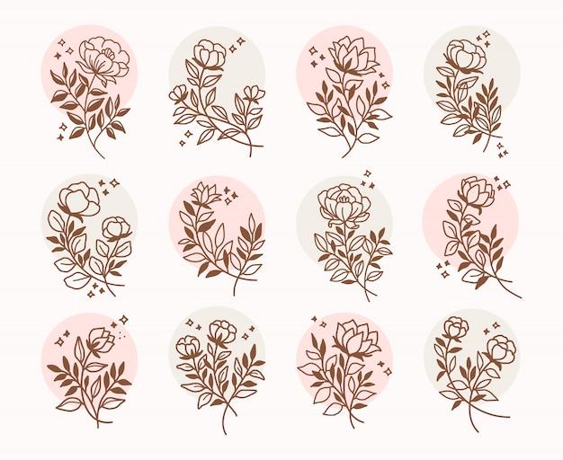 Satz handgezeichnete botanische elemente für floristenlogo oder kartendekoration