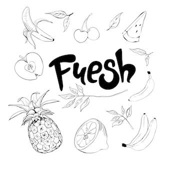 Satz handgezeichnete gekritzelfrüchte. frisches und leckeres essen.