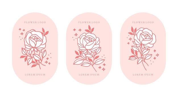 Satz handgezeichnete vintage rosa botanische rosenblume und blattzweigelemente für weibliches logo und schönheitsmarke