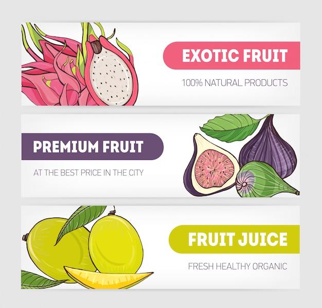 Satz horizontale banner mit pitaya oder drachenfrucht, feige und mango verziert