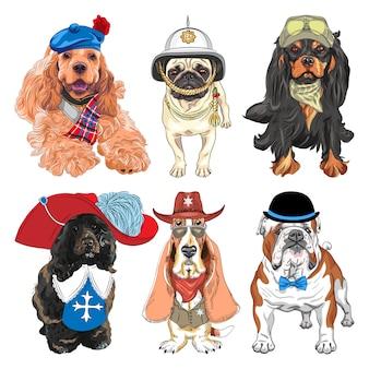 Satz hunde. cavalier king charles spaniel, basset hound als sheriff, englische bulldogge, portugiesischer wasserhund als musketier, mops im britischen helm