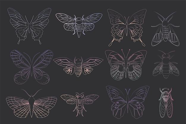 Satz insekt im umriss- und skizzenstil