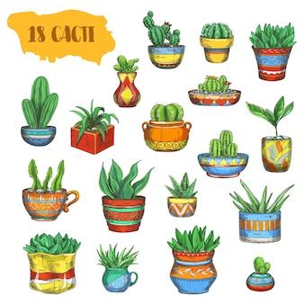 Satz isolierter kakteen im topf oder kakteen in der platte. mexikanische oder afrikanische, amerikanische pflanze mit stacheln oder dornen. südliche peyote-blüte.