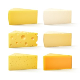 Satz käse schweizer cheddar bri parmesan camembert