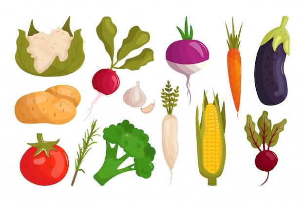 Satz karikaturgemüse. rote beete, kartoffel, tomate, aubergine, karotte, blumenkohl, brokkoli, mais, knoblauch, meerrettich. gesundes essen.