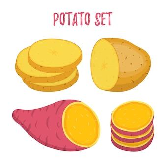 Satz kartoffel. süße, braune kartoffeln und scheiben