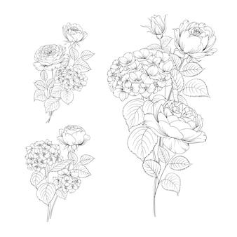 Satz linienhandzeichnung hortensie und rose.