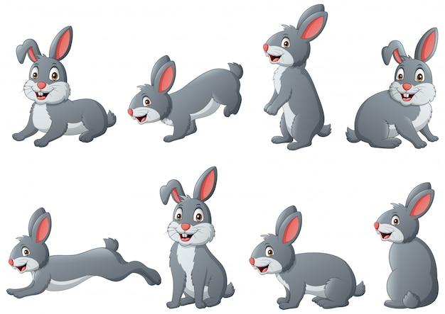 Satz lustiger kaninchenkarikatur. illustration
