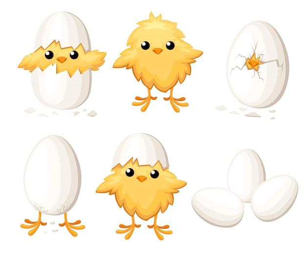 Satz lustiges huhn im ei für osterndekorationskarikaturclipart-gelber vogel in einer eierschalenillustration auf weißem hintergrund