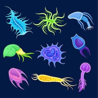 Satz mehrfarbiges plankton.