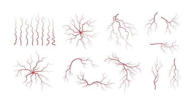Satz menschlicher venen und arterien. rote verzweigte blutgefäße und kapillaren. vektorillustration lokalisiert auf weißem hintergrund.