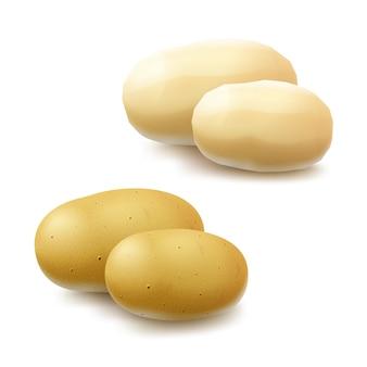 Satz neue gelbe rohe ganze geschälte ungeschälte kartoffeln schließen oben lokalisiert auf weißem hintergrund