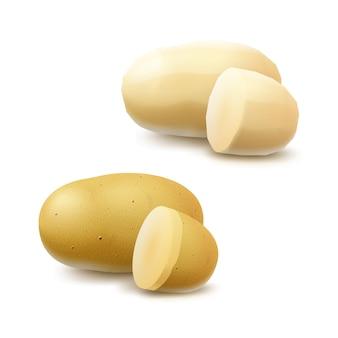 Satz neue gelbe rohe ganze geschälte ungeschälte und geschnittene kartoffeln schließen oben lokalisiert auf weißem hintergrund