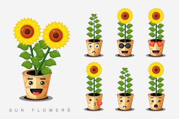 Satz niedliche sonnenblumen in einem topf