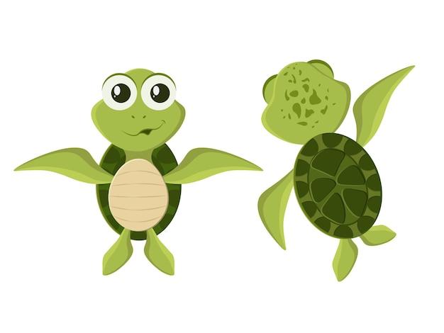 Satz niedlicher grüner schildkrötenzeichen lokalisiert auf weiß
