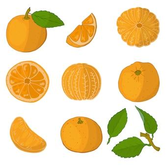 Satz orangen