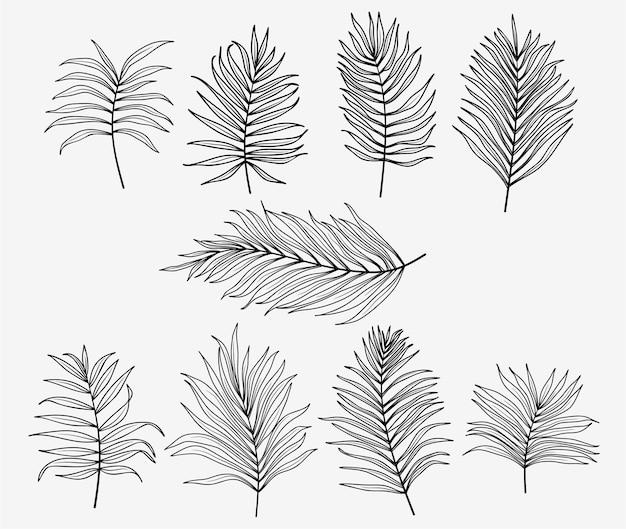 Satz palmblätter