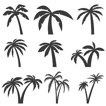 Satz palmenikonen auf weißem hintergrund. elemente für logo, etikett, emblem, zeichen, menü. illustration.