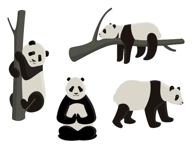 Satz pandas in verschiedenen posen. karikaturartillustrationen lokalisiert auf weißem hintergrund.