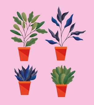 Satz pflanze mit blättern in einer topfillustration