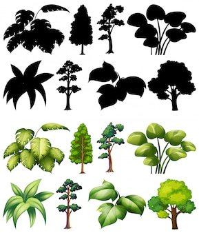 Satz pflanze und baum mit seiner silhouette