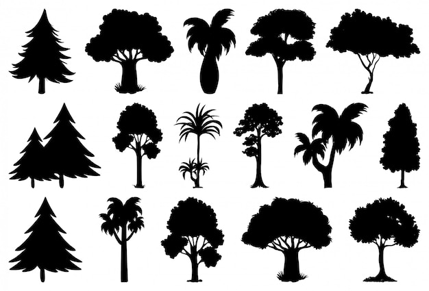 Satz pflanzen- und baumschattenbild