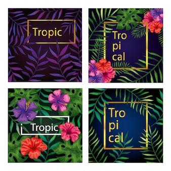 Satz rahmen tropicals von blumen mit niederlassungen und blättern