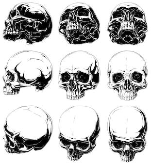 Satz realistische schwarze und weiße menschliche schädel