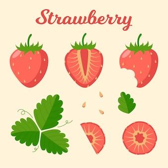 Satz reife erdbeeren und blätter. scheiben geschnittene erdbeere. flache vektorillustration.