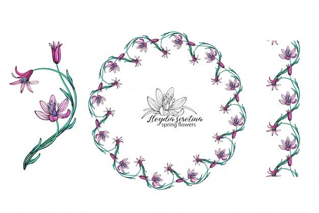 Satz rosa blumen. kranz. strauß. frühlingsblumen