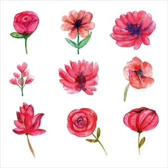 Satz rosa wildblumenaquarell der frühlingssaison für grußkarte