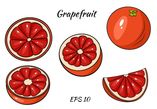 Satz saftige grapefruit.