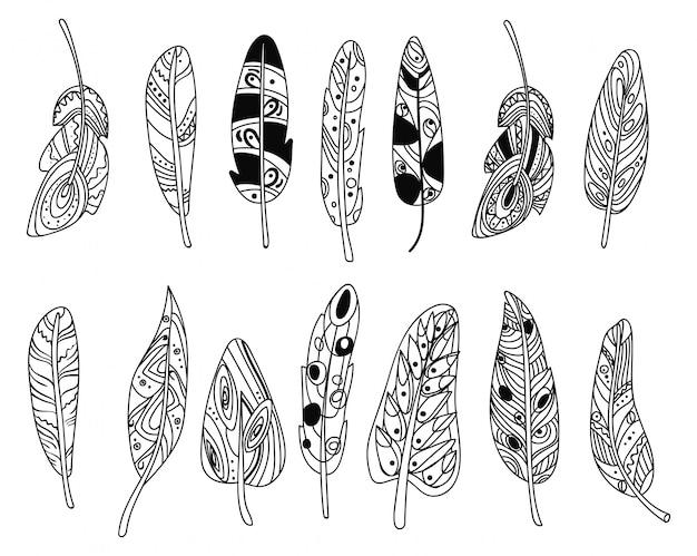 Satz stilisierte vogelfedern. sammlung von federn zur dekoration.